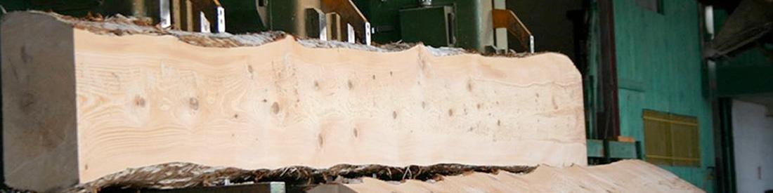 La biomasse, le bois énergie
